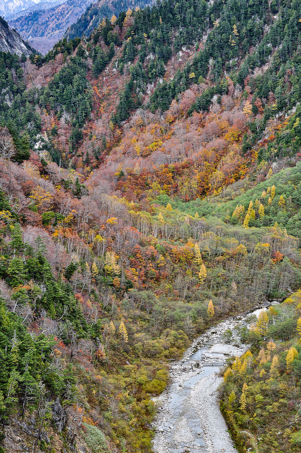 Пышный пейзаж осени красочной листвы от запруды Kurobe стоковые фото