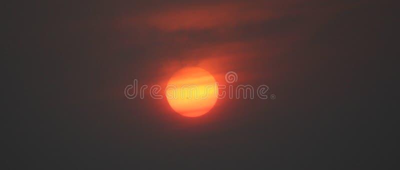 Пятна Солнця стоковое фото rf