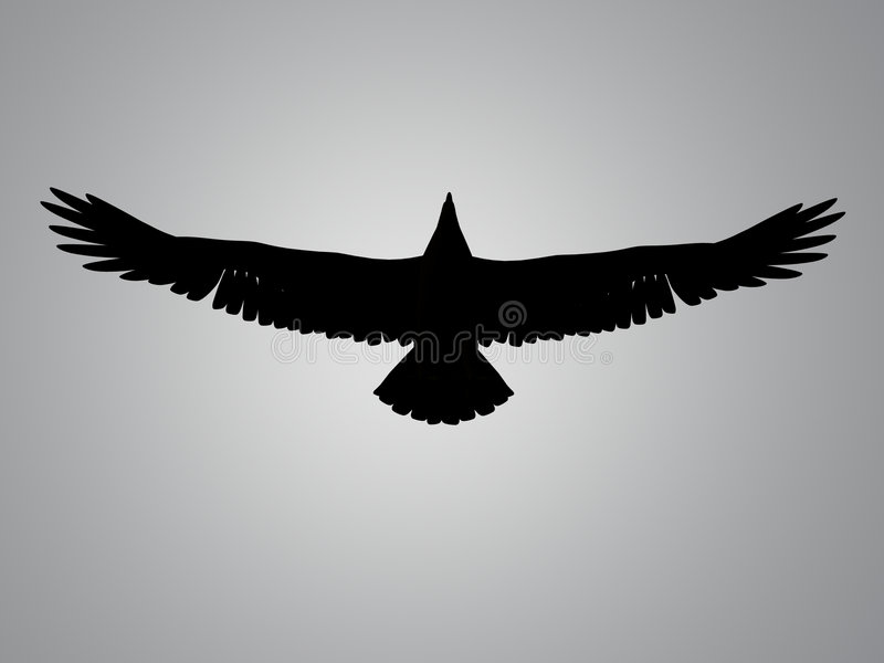 пятно силуэта орла иллюстрация вектора