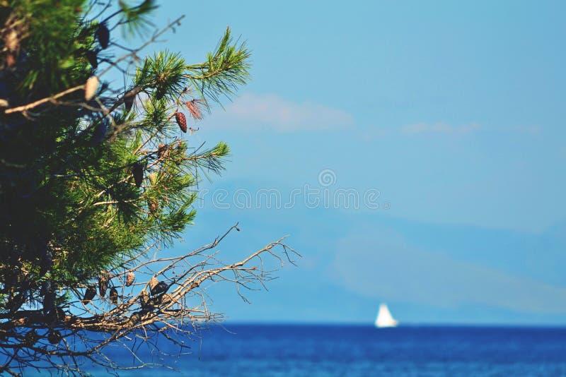 Плавайте синь стоковое фото