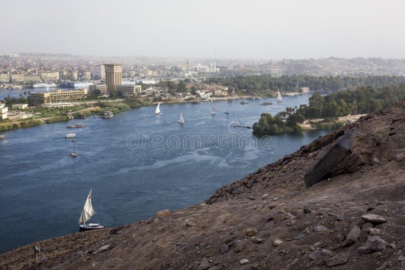 Плавание Feluccas на Ниле около Асуана, Египта стоковое изображение