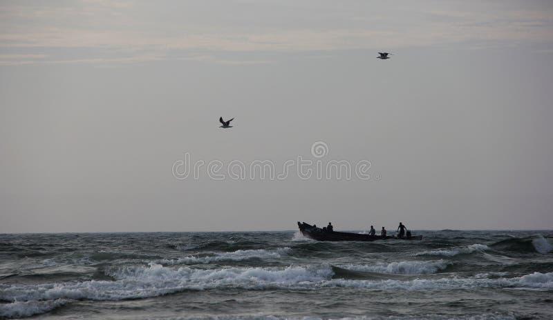 Плавать в ветре стоковое фото rf