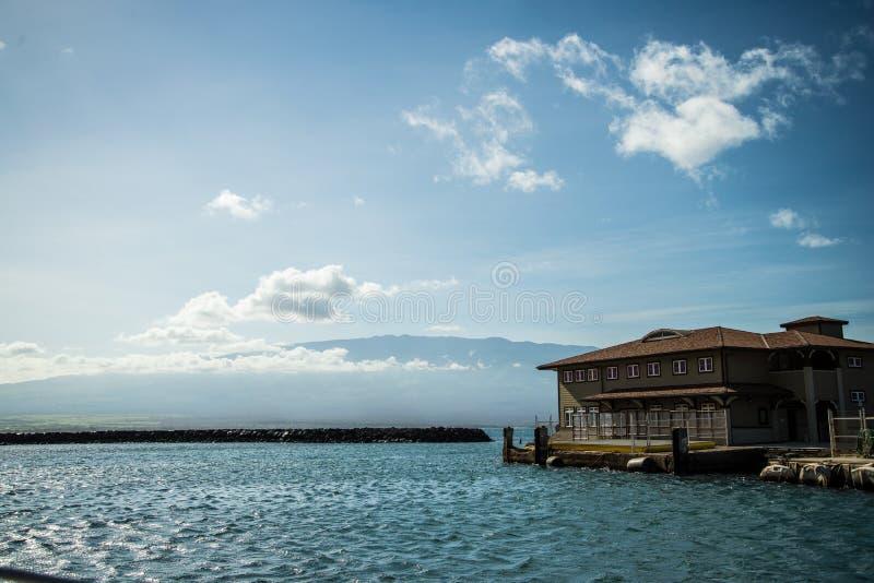 Плавать в Waikiki стоковое изображение rf