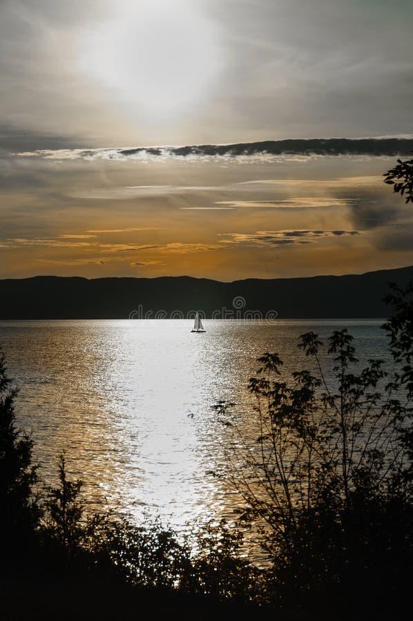 Плавать на заходе солнца стоковые фотографии rf