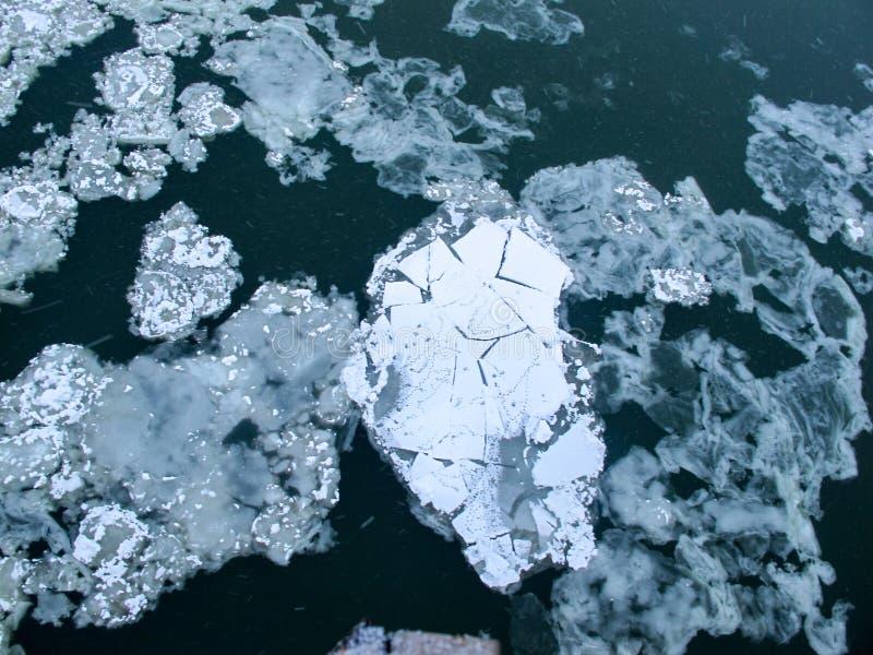 Плавая лед на воде стоковая фотография rf