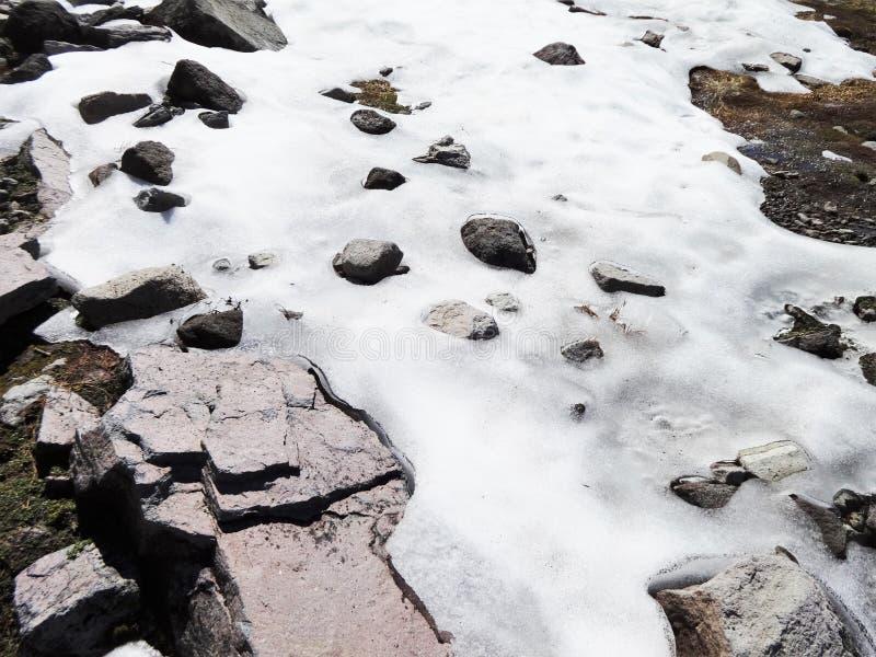 плавя снежок стоковые изображения rf