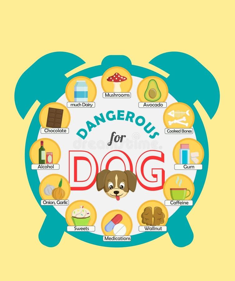 Плакат Infographic о еде и закуски который опасн для вашей собаки и могут причинить опьянение Комплект значков бесплатная иллюстрация