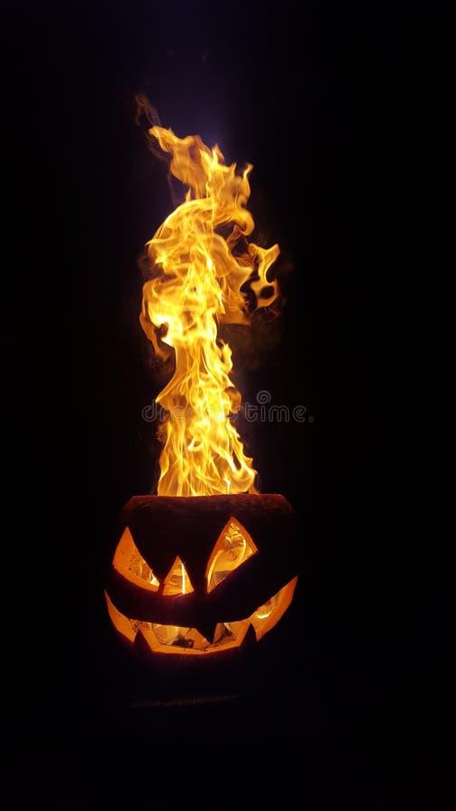 Пламенеющая тыква стоковая фотография rf