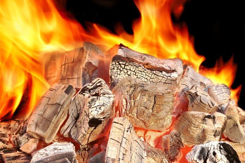 Пламенеющий конец-вверх углей стоковое изображение rf