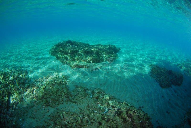 Планета океана стоковые фотографии rf