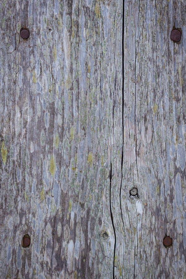 Планка старой древесины стоковое изображение rf