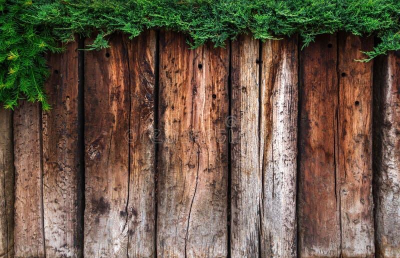 Планки Брайна деревянные с зеленой изгородью стоковые фотографии rf