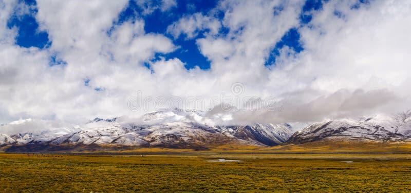 Плато Тибета стоковое фото rf