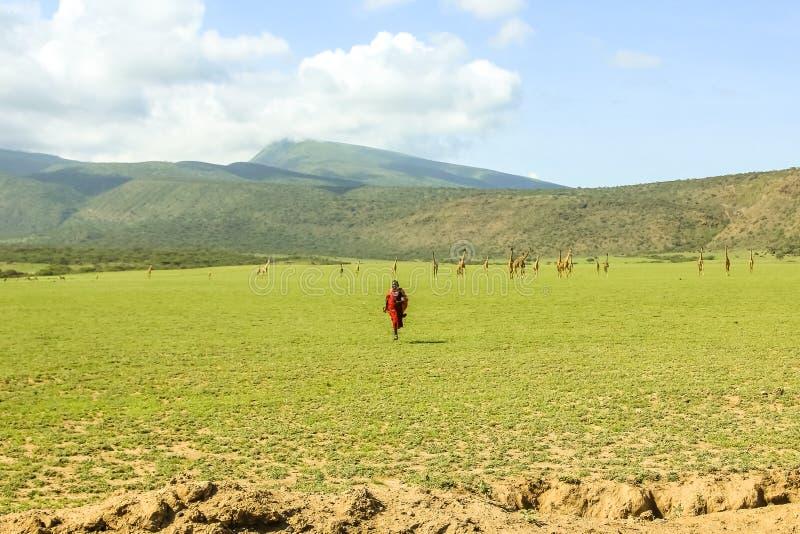 Племя Танзания Masai стоковые фото
