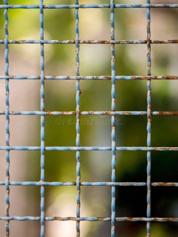 Плетение сетки на bokeh нерезкости стоковое изображение rf