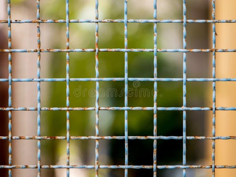 плетение сетки стоковые фотографии rf