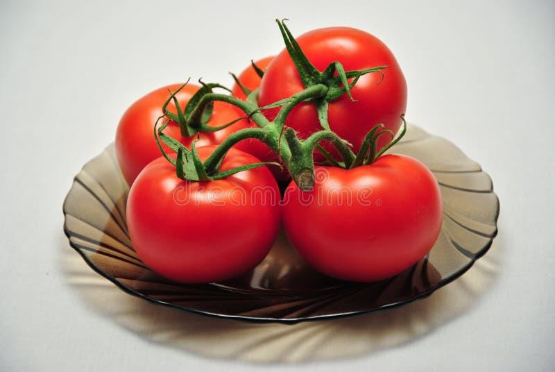 Плита томатов лозы стоковая фотография rf