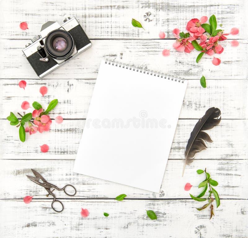 Плоская весна пинка камеры фото sketchbook бумаги положения цветет стоковое изображение