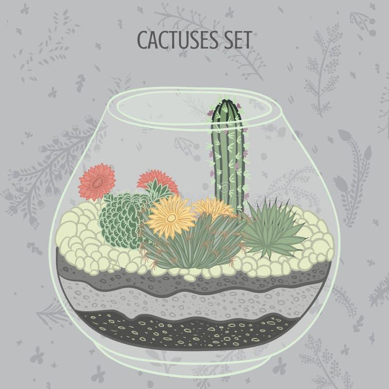 Плоская красочная иллюстрация суккулентных заводов и кактусов в аквариуме бесплатная иллюстрация