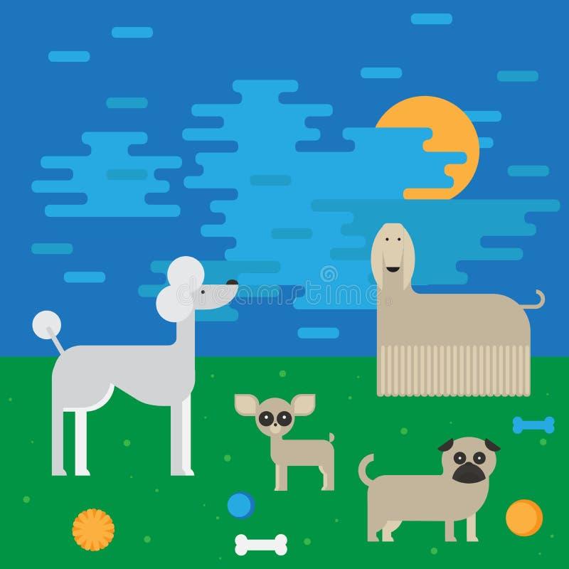 Плоские характеры собаки установили, чихуахуа собрания домашнего животного шаржа, мопс и afgan борзая на прогулке иллюстрация штока