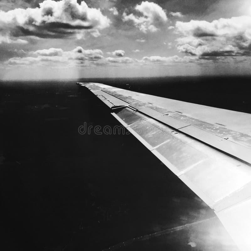 Плоское крыло в черно-белом стоковые изображения rf