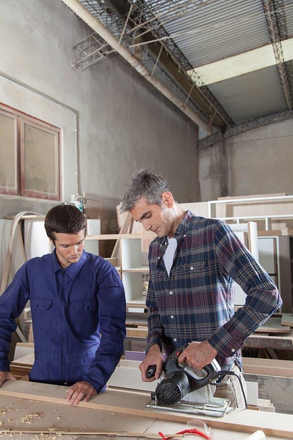 Плотник с его ассистентом стоковое фото rf