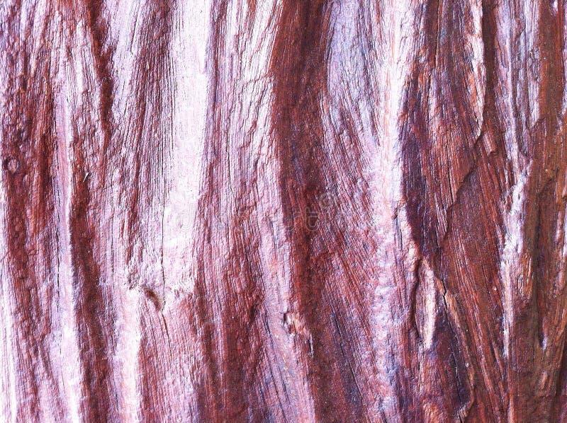 плотное строение вверх по деревянному стоковые фотографии rf