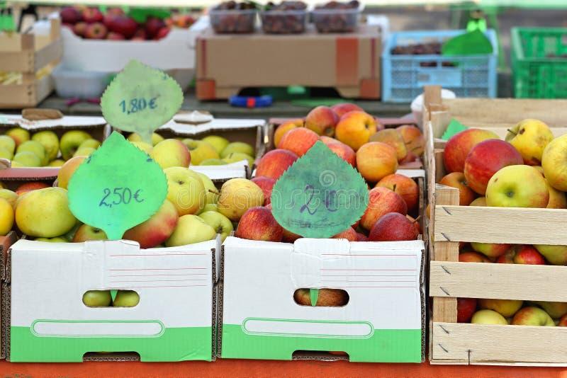 Плодоовощи в клетях стоковое фото