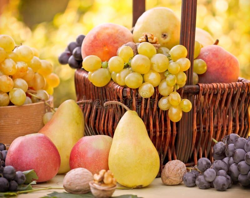 Download Плодоовощи осени - органические плодоовощи Стоковое Изображение - изображение насчитывающей гайка, automobiled: 41655349