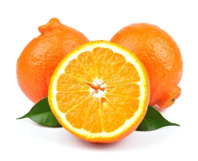 Сладкие апельсины fruits (minneola) стоковое фото