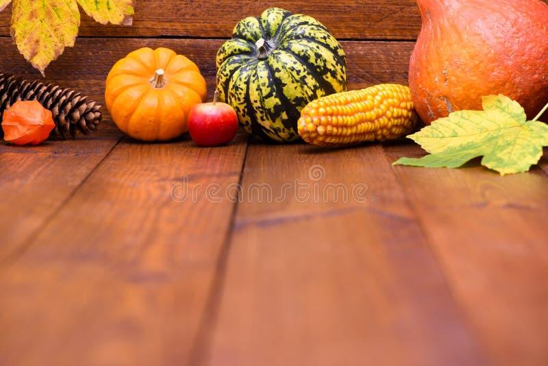 Плодоовощи тыквы как украшение и предпосылка стоковое изображение rf