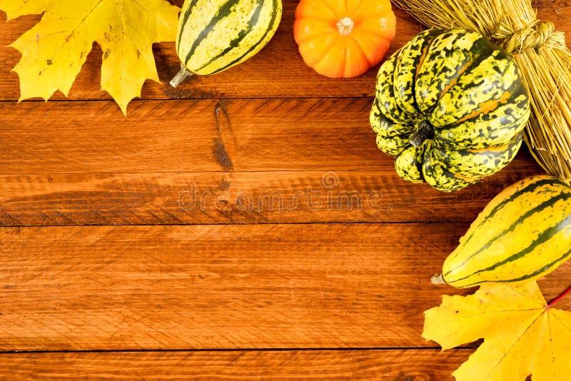 Плодоовощи тыквы как украшение и предпосылка стоковые изображения rf