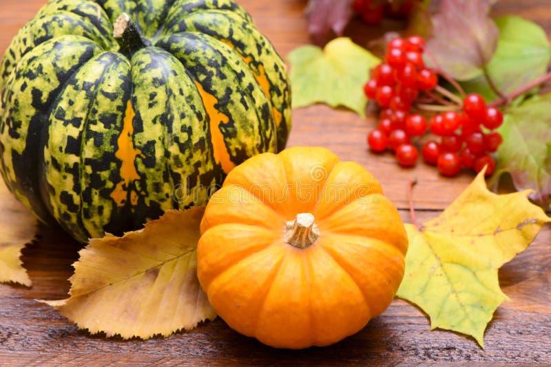 Плодоовощи тыквы как украшение стоковая фотография rf