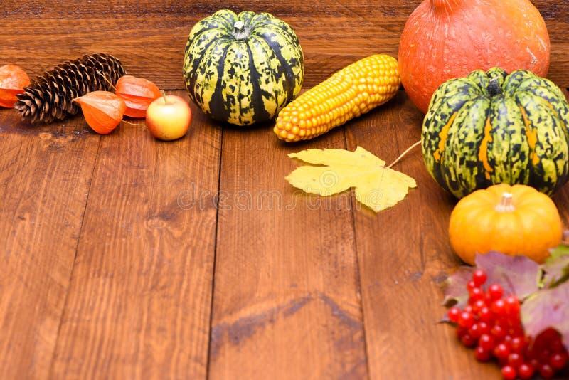 Плодоовощи тыквы как украшение стоковое изображение