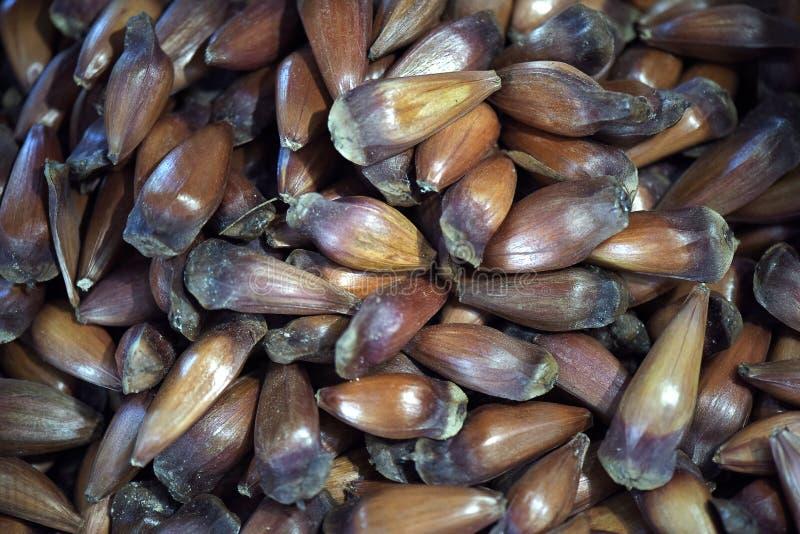 Download Плодоовощ бразильской сосны на уличном рынке Стоковое Фото - изображение насчитывающей вкусно, флейвор: 81806070