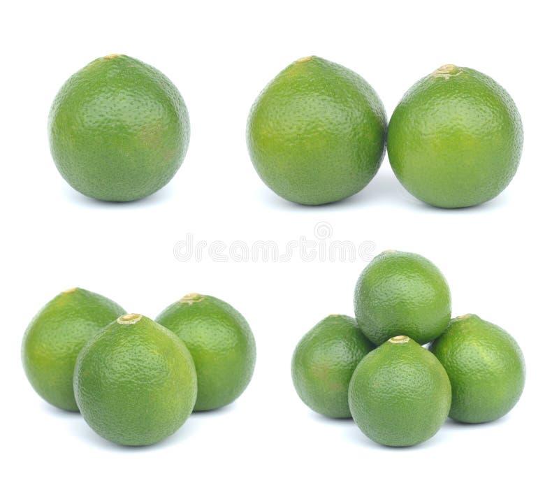 Плодоовощ известки цитруса стоковое фото rf