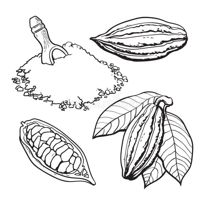 Плодоовощ какао, фасоли и порошок, комплект иллюстраций вектора стиля иллюстрация вектора