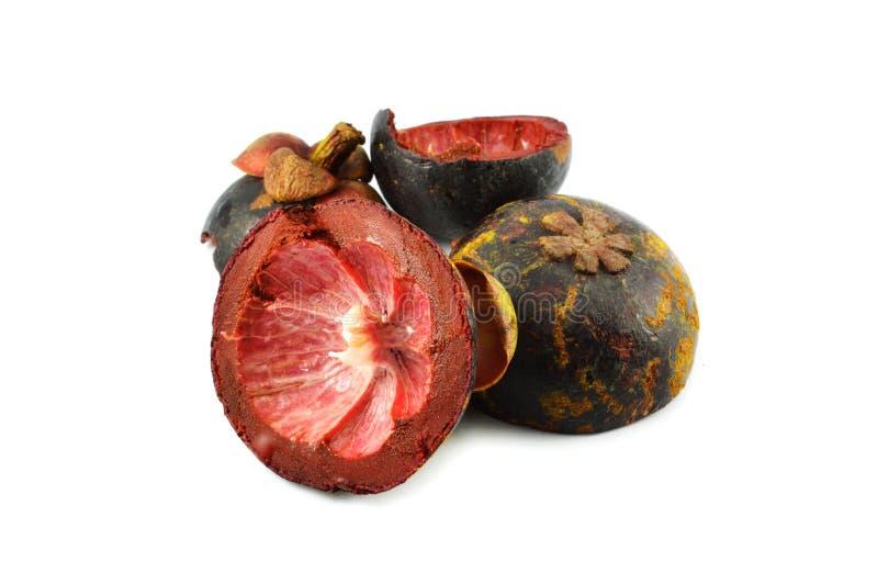 Плодоовощ мангустана раковины стоковое изображение
