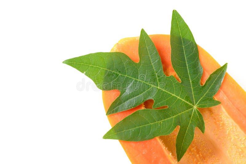 Плодоовощ папапайи отрезал и листья изолированные на белой предпосылке стоковое изображение rf