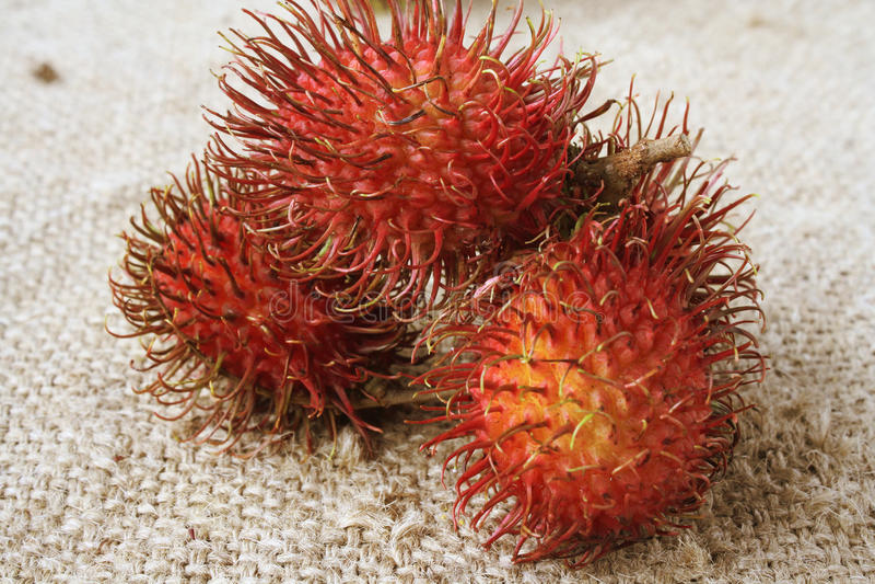 Плодоовощ рамбутана тропический стоковая фотография rf