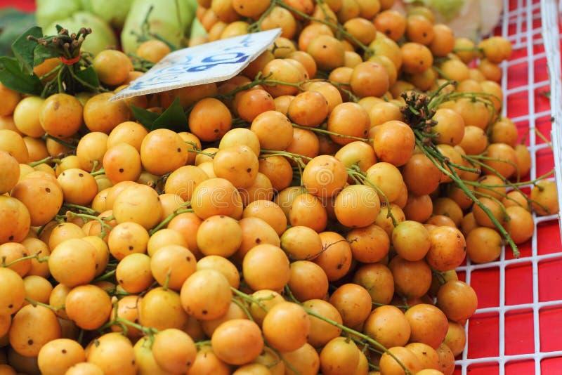 Плодоовощ сливы Мэриан - плодоовощ Азии стоковое фото rf