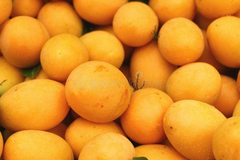 Плодоовощ сливы Мэриан - плодоовощ Азии стоковое изображение