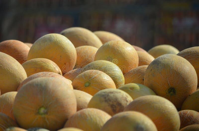 Плодоовощ дыни стоковое изображение