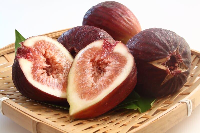 Плодоовощ Ficus Carica стоковая фотография