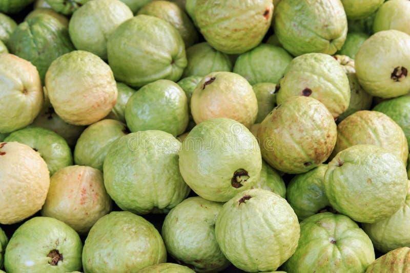 Плодоовощ Guavas стоковое изображение