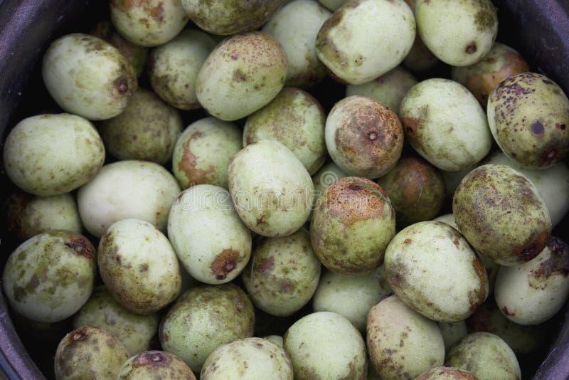 Плодоовощ Marula стоковые фотографии rf