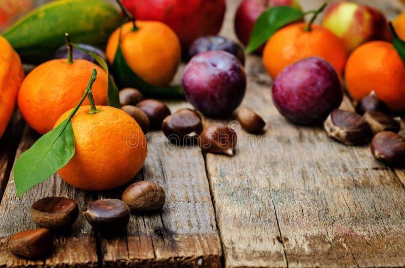 Плодоовощ tangerines, сливы, тыквы, яблоки и каштаны стоковые фото