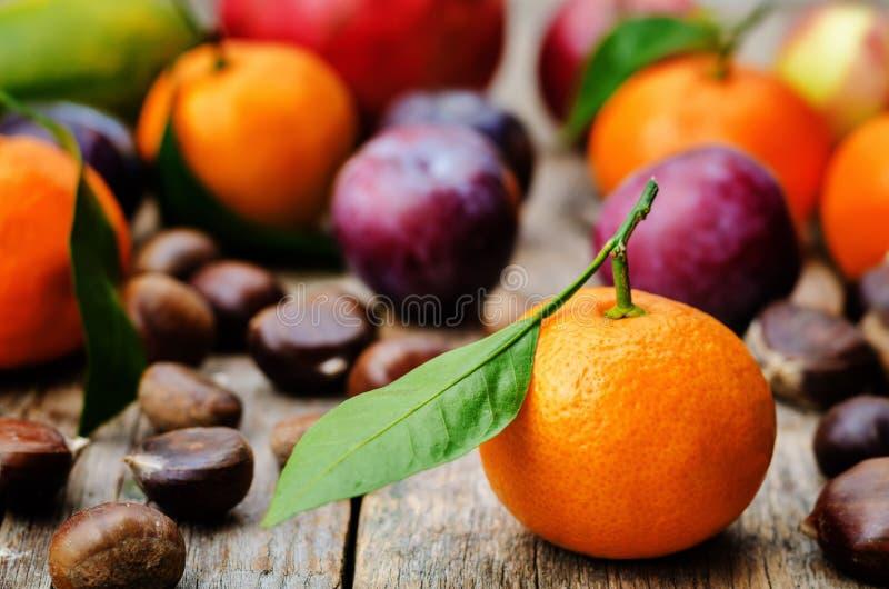 Плодоовощ tangerines, сливы, тыквы, яблоки и каштаны стоковые изображения rf