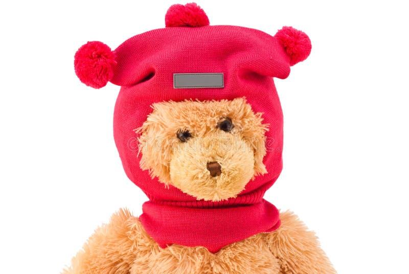 Плюшевый медвежонок в шляпе связанной зимой с помпонами стоковая фотография rf