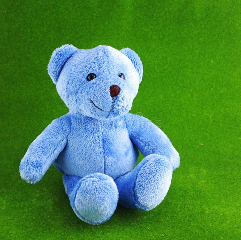 Плюшевый медвежонок на зеленой предпосылке стоковые изображения rf